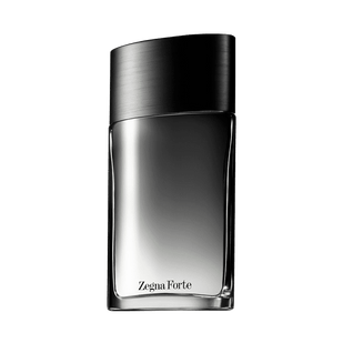 -Ermenegildo-Zegna-Zegna-Forte-Eau-de-Toilette---Perfume-Masculino-100ml