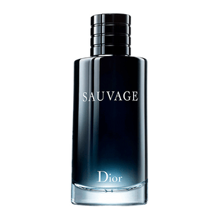 Dior-Sauvage-Eau-de-Toilette---Perfume-Masculino